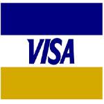 Visa Card Logo